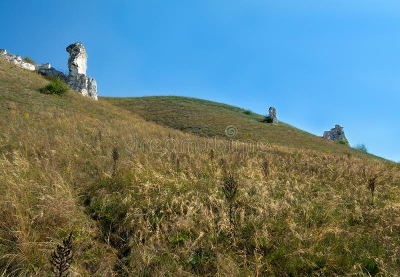 Weergeven van kleine diva, het natuurreservaat Divnogorye, Voronezh-gebied stock afbeeldingen