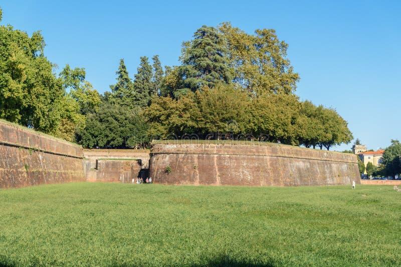 Weergeven van stadsmuur in Luca Italië stock afbeelding