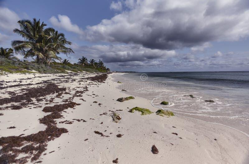 Weergeven van strand xpu-Ha royalty-vrije stock afbeeldingen