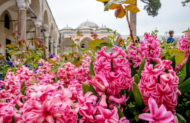 Weergeven van Topkapi-Paleis in Istanboel, Turkije royalty-vrije stock afbeeldingen