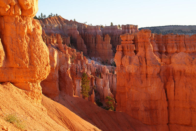 Weerspiegelde Lichten van Bryce Canyon stock afbeelding