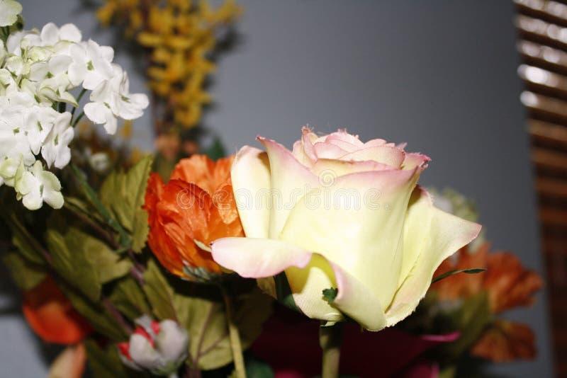 Weerspiegelende rozen royalty-vrije stock afbeelding