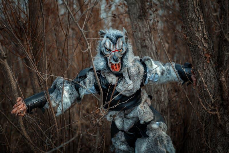 Weerwolf in het bos royalty-vrije stock fotografie