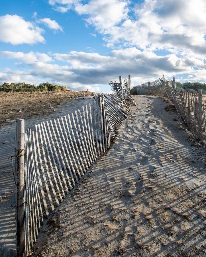 Weg über den Dünen, zum auf Cape Cod auf den Strand zu setzen - Bild 2 lizenzfreie stockbilder