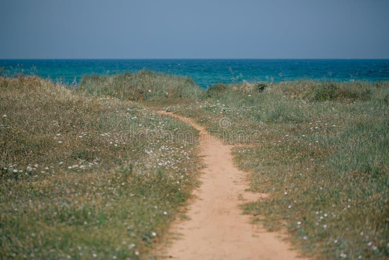 Weg aan Adriatische de overzeese kustapulia van Italië royalty-vrije stock afbeelding