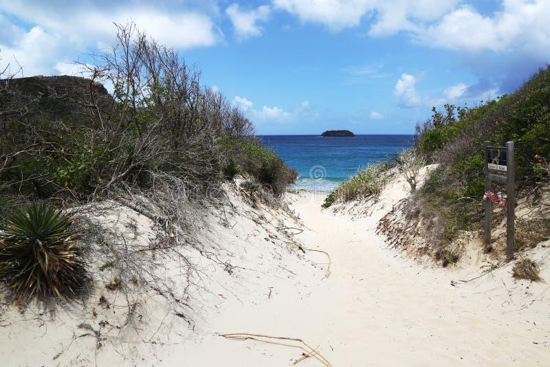 Weg aan beroemd Zout strand, St Barths, de Franse Antillen royalty-vrije stock afbeeldingen