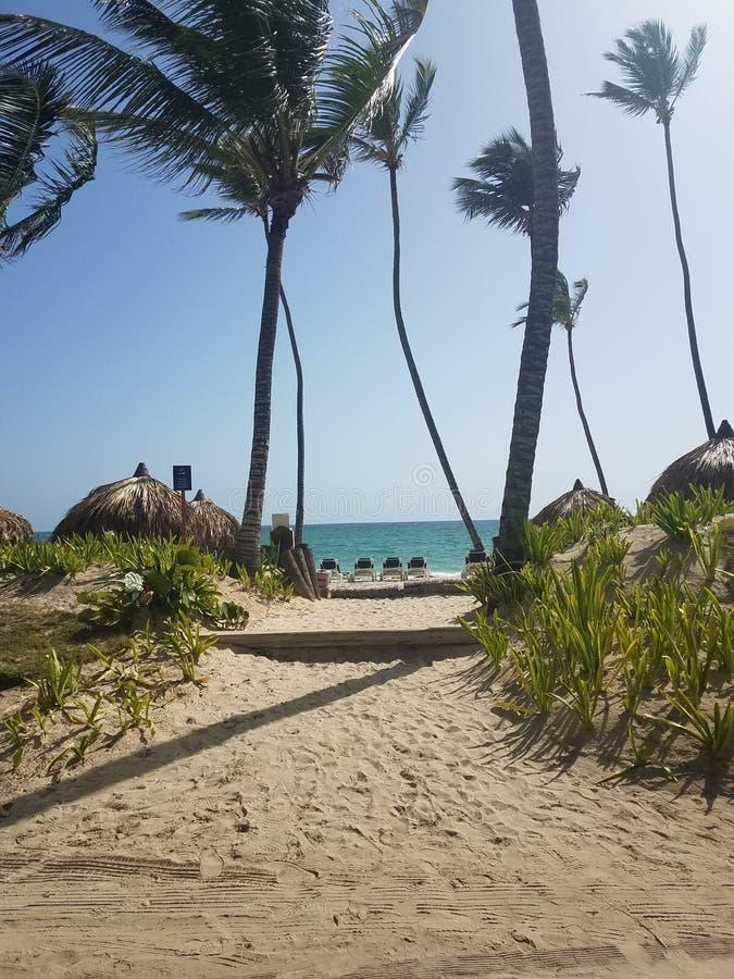 Weg aan de oceaan Dominicaanse republiek stock afbeelding