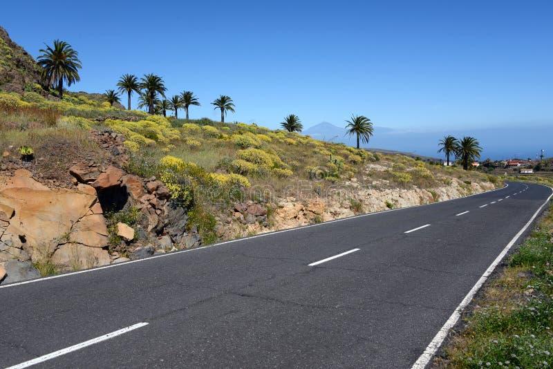 Weg aan Playa DE Santiago op Gomera royalty-vrije stock foto