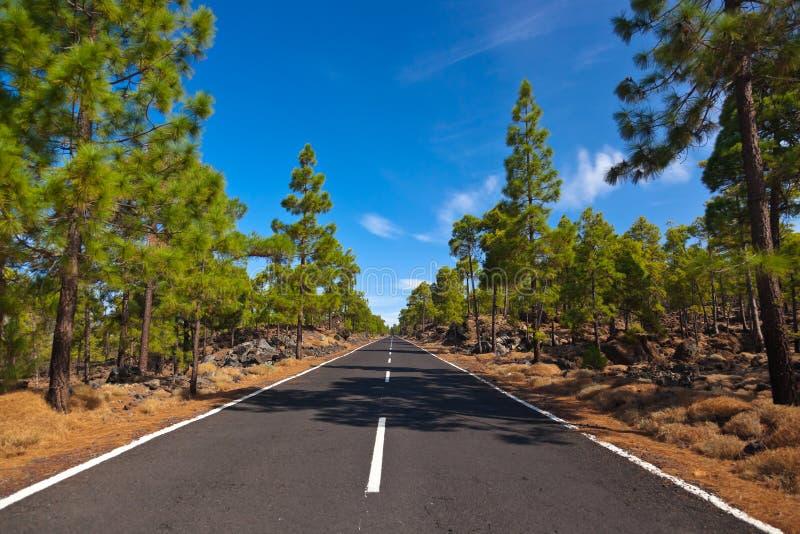 Weg aan vulkaan Teide bij het eiland van Tenerife - Kanarie royalty-vrije stock afbeelding