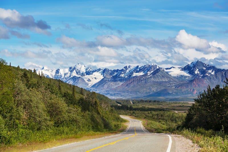 Weg in Alaska stock afbeelding
