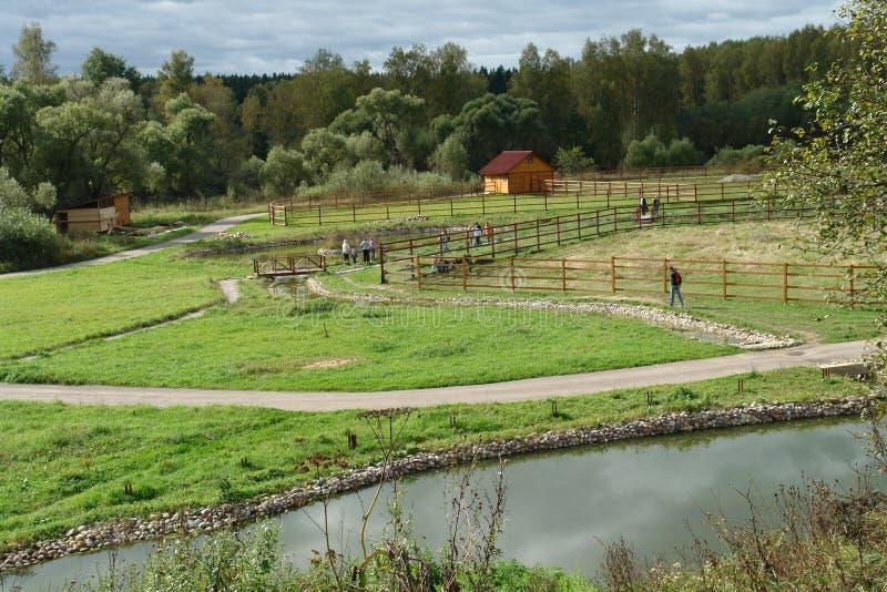 Weg auf Bauernhof stockbild