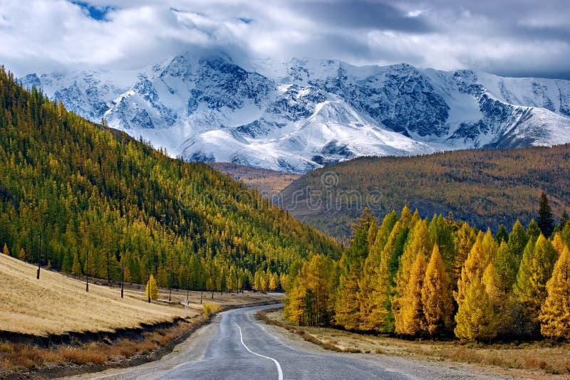 Weg in berg stock afbeelding