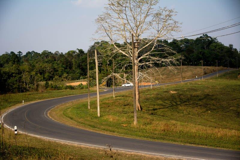Weg bij het Nationale Park van Khao Yai royalty-vrije stock afbeeldingen
