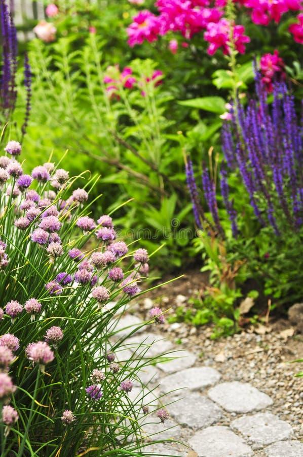 Weg in bloeiende tuin royalty-vrije stock afbeeldingen