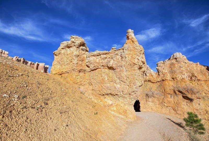 Weg in Bryce Canyon National Park, Utah, de V.S. royalty-vrije stock foto's