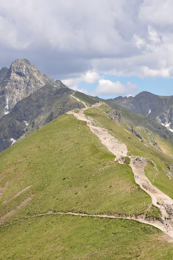 Weg in de berg stock afbeeldingen