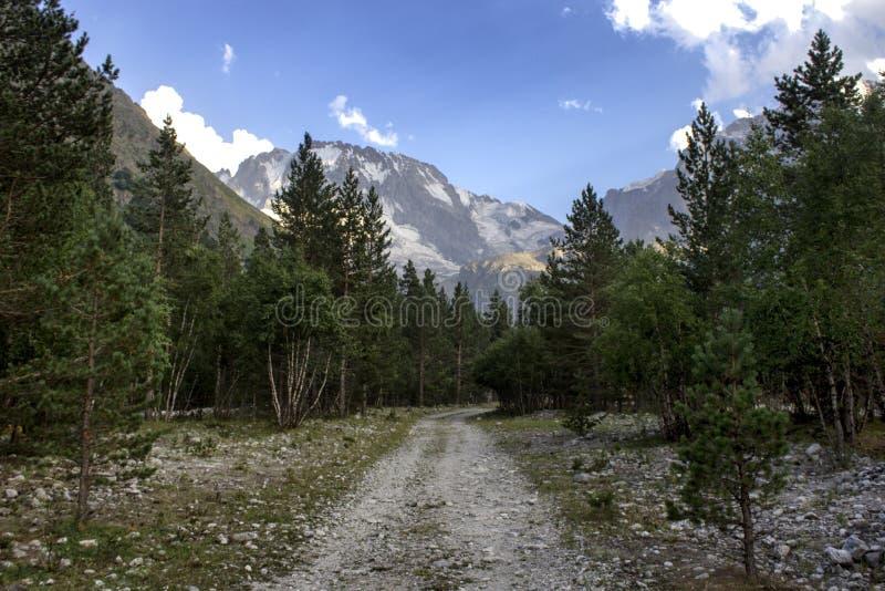 Weg in de bergen royalty-vrije stock afbeelding