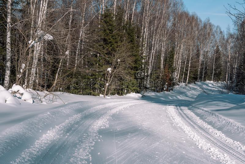 Weg in de bosbomen van de de winter boswinter in de sneeuw dichtbij de weg De bomen van de winterforest christmas in de sneeuw stock foto's