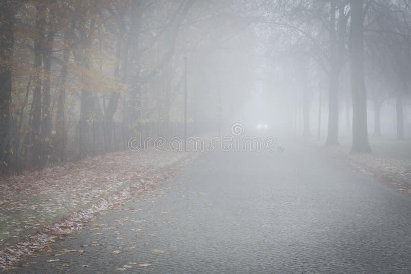 Weg in de mist stock afbeelding