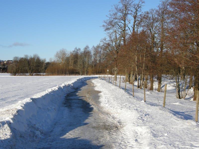 Weg in de sneeuw stock foto's