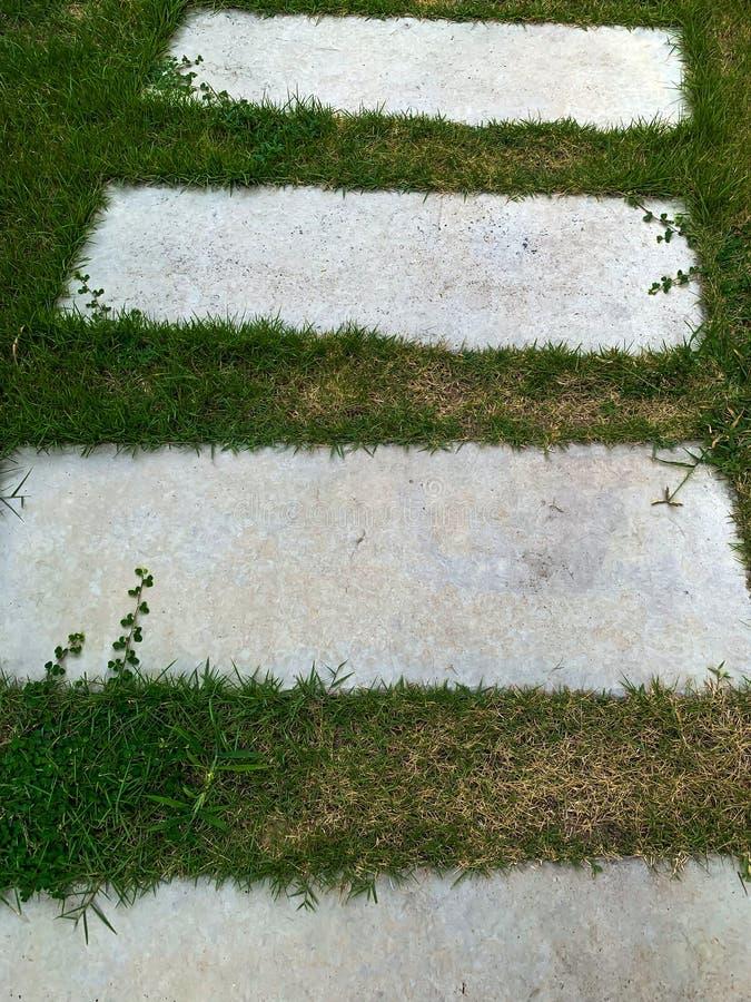 Weg in de tuin, springplanken in het grasgazon royalty-vrije stock afbeeldingen