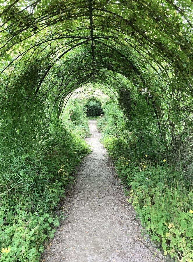 Weg in de tuin van Cawdor-Kasteel bij de parochie van Cawdor in N stock afbeeldingen