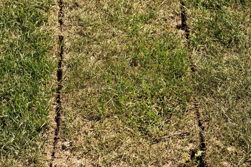Weg des geschnitzten natürlichen Rasens lizenzfreies stockbild