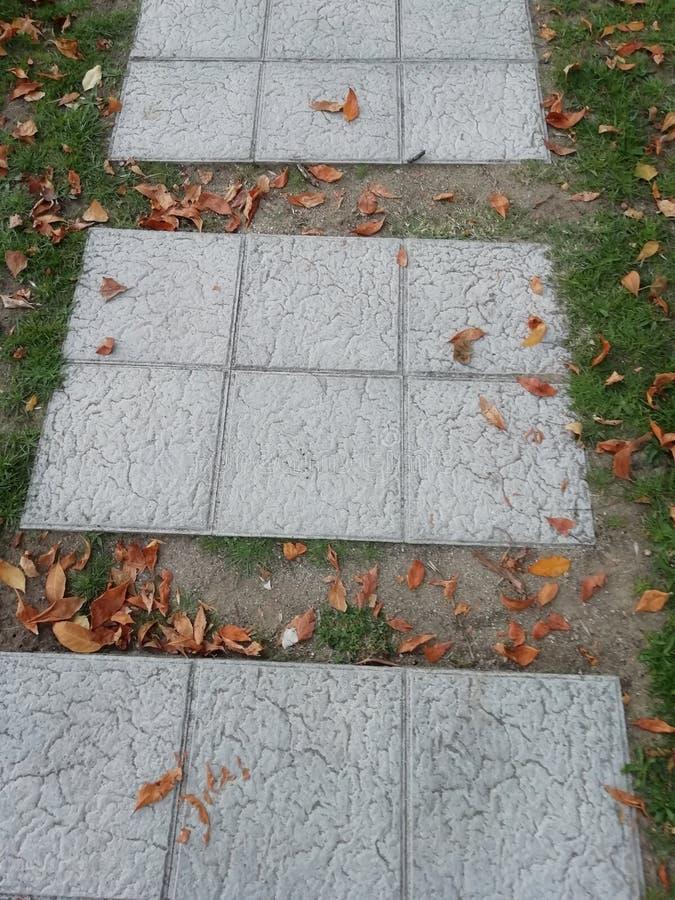 Weg des Herbstes lizenzfreies stockfoto