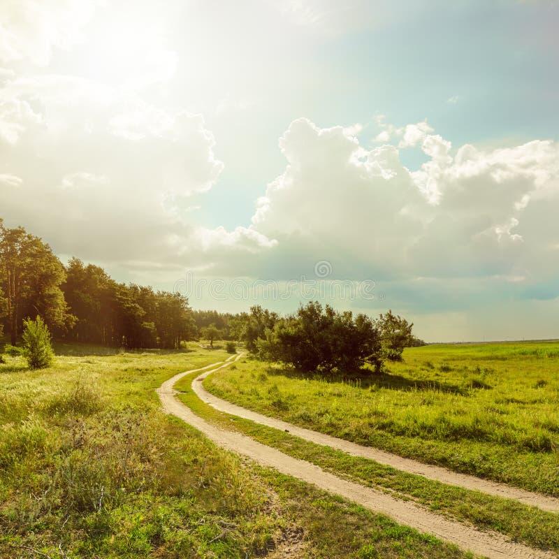Weg dichtbij bos onder lage zon met wolken royalty-vrije stock afbeeldingen