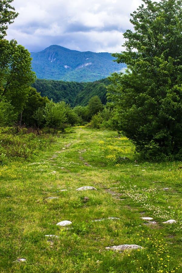 Weg die in de bergen van Abchazië verdwijnen stock foto's