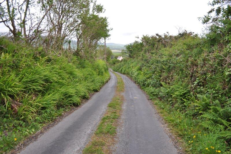 Weg in Dingle, Provincie Kerry, Ierland stock afbeeldingen