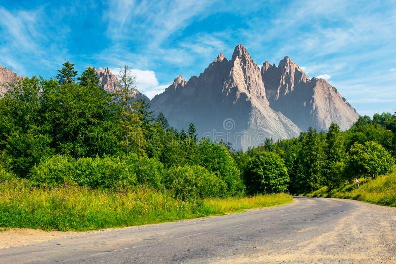 Weg door bos binnen aan de bergen royalty-vrije stock afbeelding