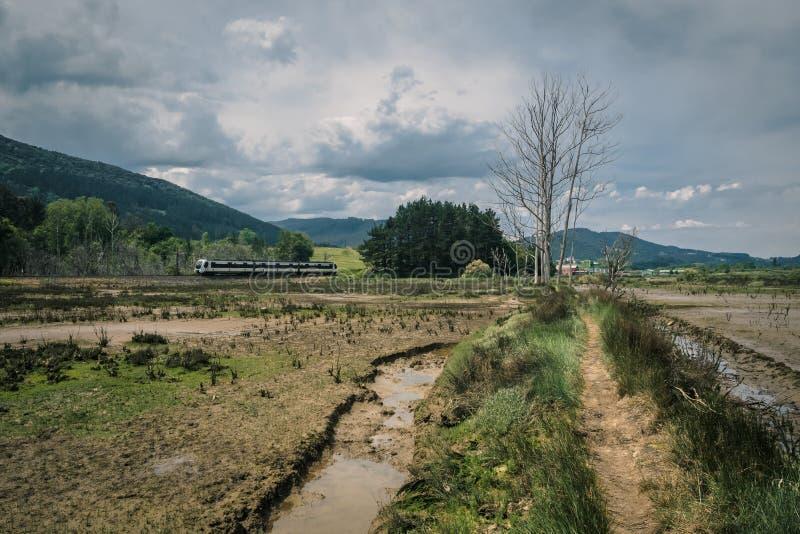 Weg door de moerassen in de Biosfeerreserve van Urdaibai tijdens een bewolkte dag in het Baskische Land stock afbeeldingen