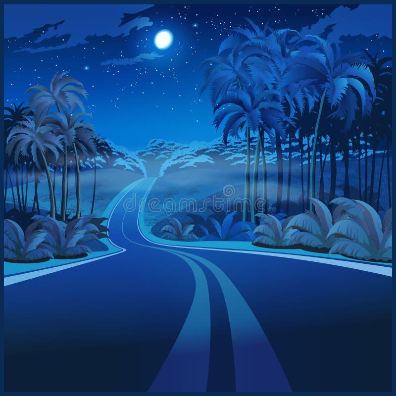 Weg door de wildernis bij nacht vector illustratie