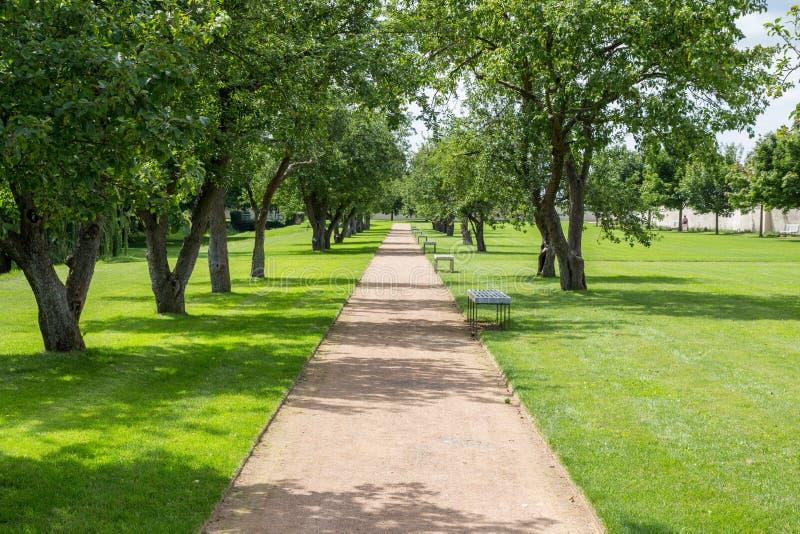 Weg door het park in de zomer royalty-vrije stock afbeeldingen
