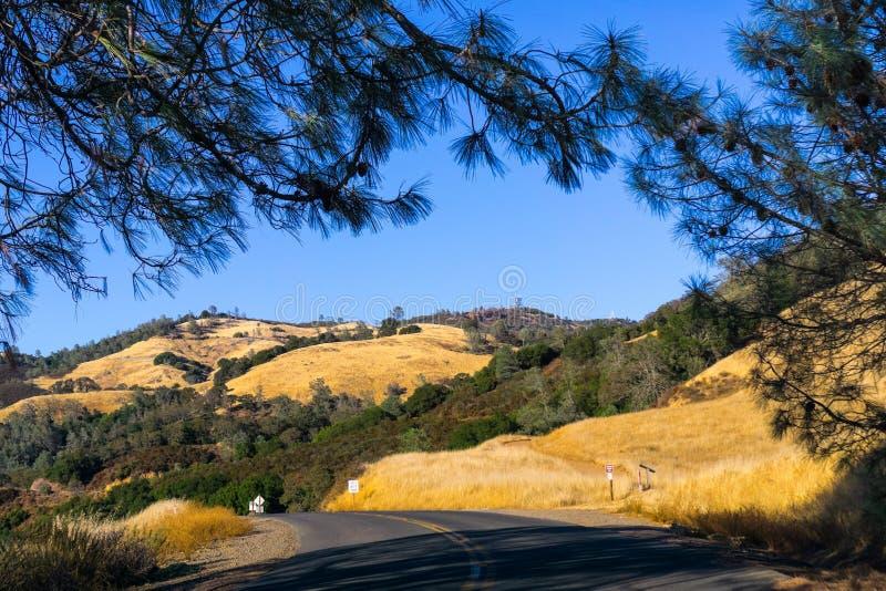 Weg door MT Diablo State Park royalty-vrije stock fotografie