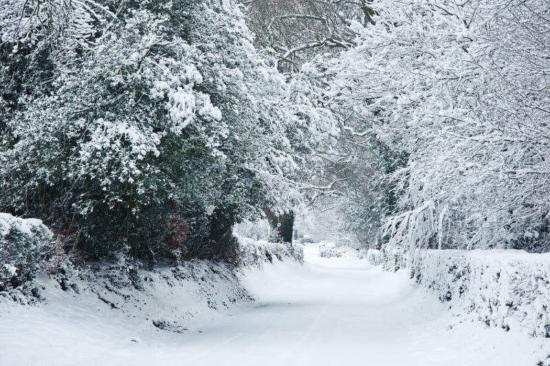 Weg door platteland in de Winter stock fotografie