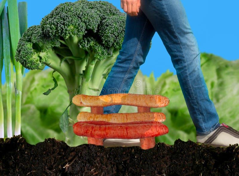 Weg durch den Gemüseflecken lizenzfreies stockbild