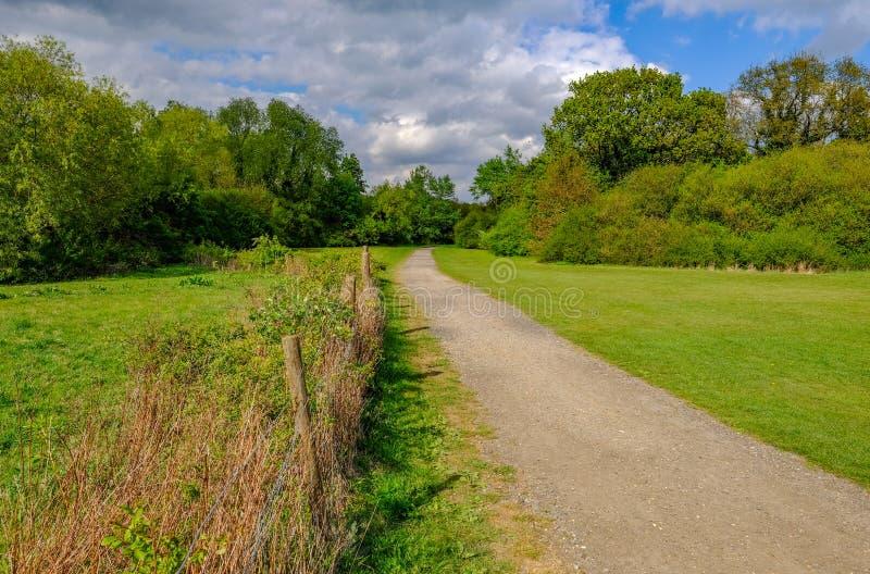 Weg durch die Essex-Landschaft im Frühjahr stockbilder