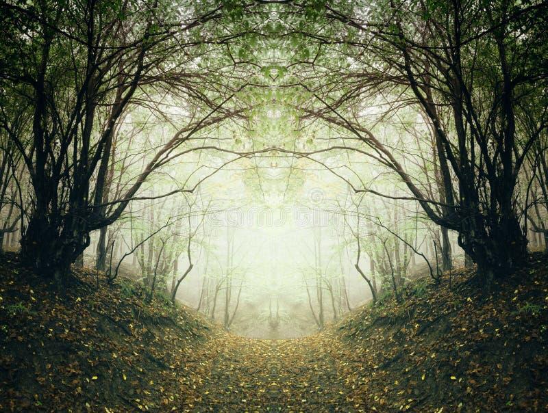Weg durch surrealen Herbstwald stockfotos