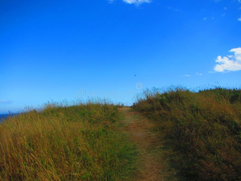 Weg in einer Wiese über dem Hügel lizenzfreie stockfotos