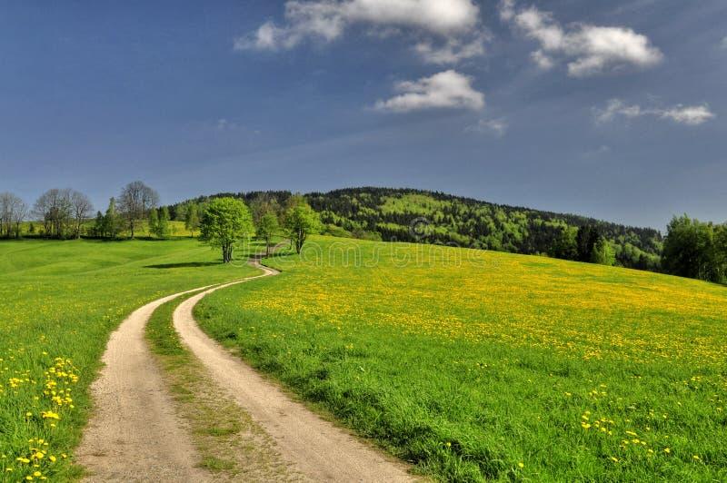 Weg en de lentelandschap stock afbeelding