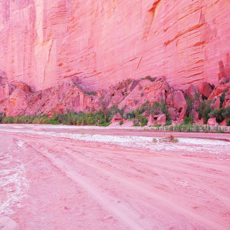 Weg en rode rots op de bodem van de canion. royalty-vrije stock afbeeldingen