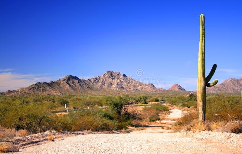 Weg en woestijn royalty-vrije stock fotografie