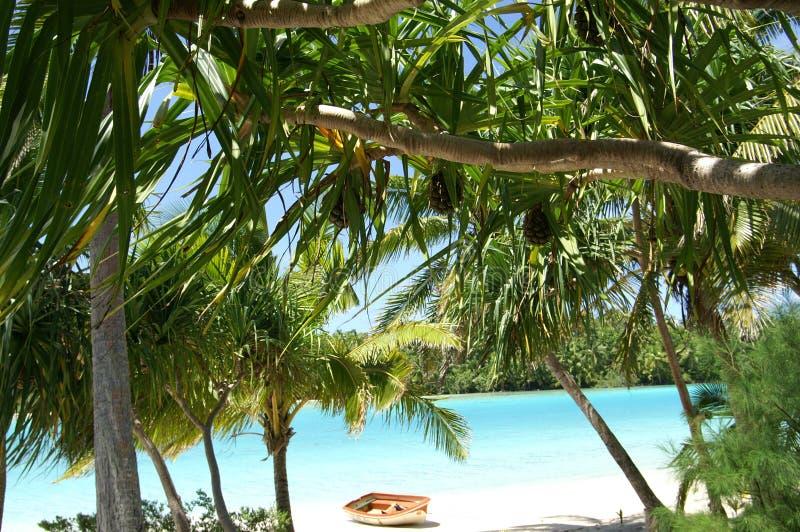 Weg gegoten op paradijsstrand stock foto's