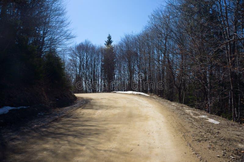 Weg in het bergbos stock fotografie