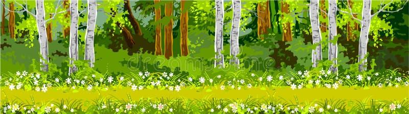 Weg in het bospanorama stock illustratie