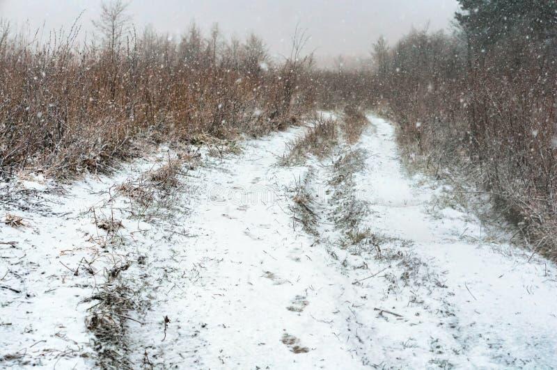 Weg in het gebied en de sneeuwstorm, gebieds snow-covered weg royalty-vrije stock afbeelding