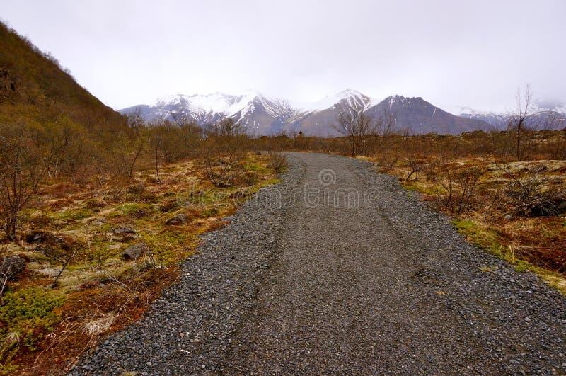 Weg IJsland stock foto