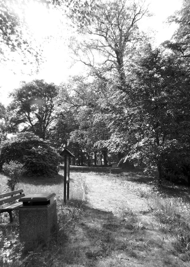Weg im Park am sonnigen Tag lizenzfreie stockbilder